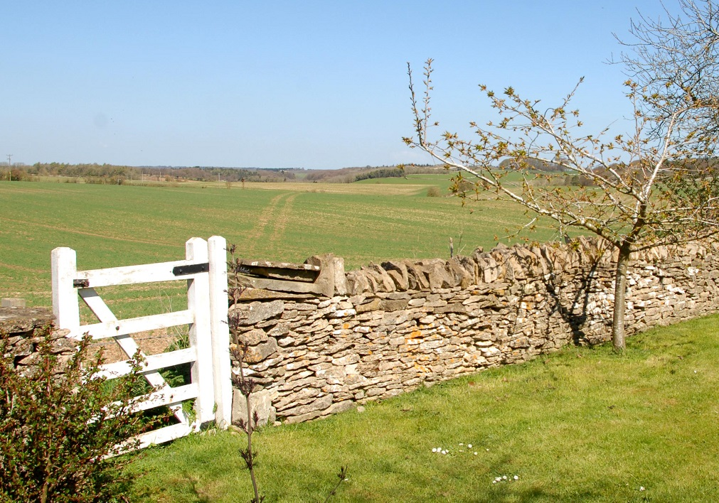 Focus On: Dry Stone Walling